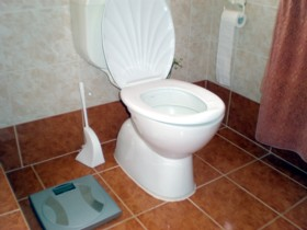 Learn how to clean a toilet without buying chemicals
